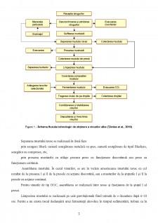 Tehnologia de obținere a vinurilor - Pagina 2