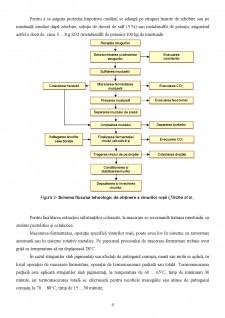 Tehnologia de obținere a vinurilor - Pagina 4