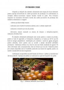Utilaje de spălare a ambalajelor - Pagina 4