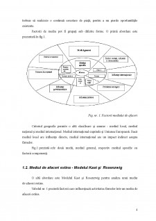 Mediul de afaceri românesc și piața serviciilor din România - Pagina 5