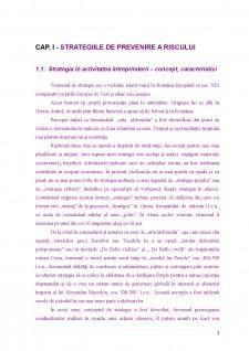 Strategii de prevenire a riscurilor în cadrul intreprinderilor mici și mijlocii - Pagina 4