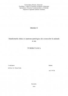 Manifestările clinice și anatomo-patologice ale zoonozelor la animale și om - Tuberculoză - Pagina 1