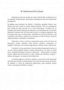 Manifestările clinice și anatomo-patologice ale zoonozelor la animale și om - Tuberculoză - Pagina 5