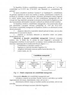 Conspect la contabilitatea managerială - Pagina 3