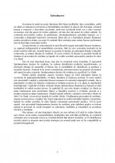 Rolul băncilor în economia de piață - Pagina 5