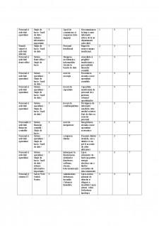 Auditul performantei sistemelor informatice la SC Conver SRL - Pagina 5