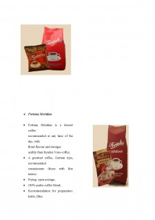 Export strategy for Fortuna Coffee - Pagina 5
