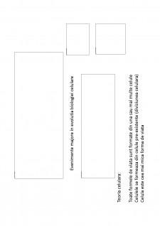 Suport de curs biologie celulara - Pagina 2