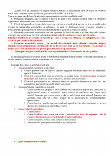 Auditul - Pagina 1