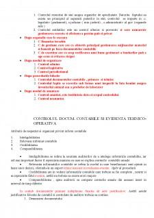 Auditul - Pagina 2
