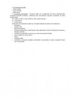 Organizarea plăților în cadrul băncilor - Pagina 4