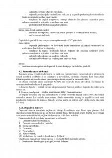 Operațiunile pasive ale băncilor - Pagina 2