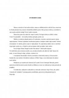 Biocenozele bentale de pe substratul dur din sudul litoralului românesc - Pagina 4