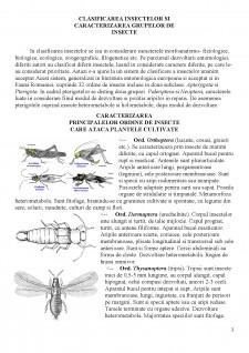 Distributia pe culturi a principalelor insecte daunatoare si metode de combatere - Pagina 3