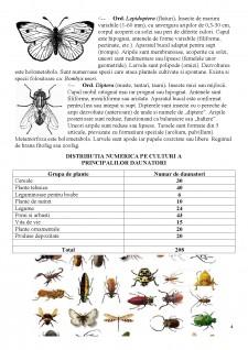 Distributia pe culturi a principalelor insecte daunatoare si metode de combatere - Pagina 5