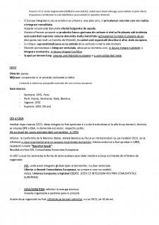 Dreptul Uniunii Europene I - Pagina 4