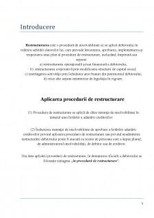 Insolvabilitatea întreprinzătorului - Procedură de restructurare - Pagina 3