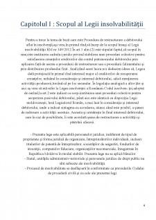 Insolvabilitatea întreprinzătorului - Procedură de restructurare - Pagina 4