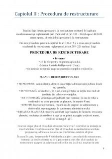 Insolvabilitatea întreprinzătorului - Procedură de restructurare - Pagina 5