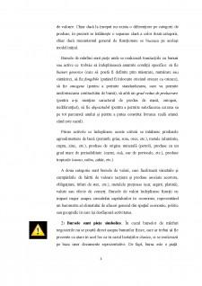 Piețe de capital - Pagina 4
