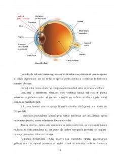 Ochiul - Pagina 5