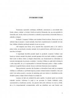 Adaptarea ofertei la cerere în cadrul companiei Oriflame - Pagina 4