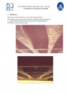 Fiabilitatea lucrărilor de artă - Pagina 4