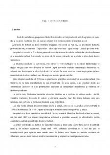 Tehnologia alcoolului rafinat alimentar - Pagina 2