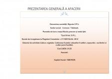 Livada de nuci în comuna Tăbărăști - plan de afaceri - Pagina 2