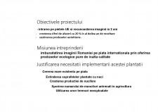 Livada de nuci în comuna Tăbărăști - plan de afaceri - Pagina 5