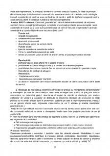 Plan de afaceri - Pagina 3