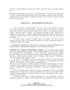 Managementul Riscului Bancar - Pagina 5
