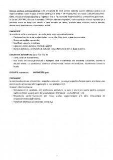 Clinica medicală și prelegeri clinice pe specii - Pagina 3