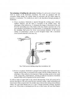 Some aspects regarding the underground storage of natural gas în saline deposits - Pagina 3