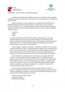 Instituții ale Uniunii Europene - atribuții financiare și modul de înfăptuire a acestora - Pagina 3
