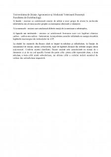 Telomeraza - Pagina 3