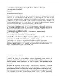Telomeraza - Pagina 4