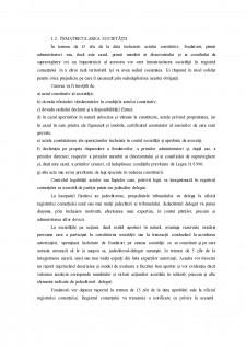 Societățile comerciale - Pagina 5