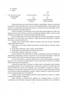 Obținerea etanolului - Pagina 3