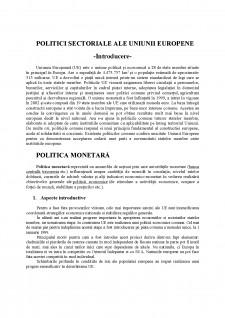 Politici structurale ale Uniunii Europene - Pagina 1