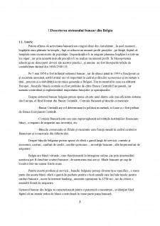 Monografia sistemului bancar din Belgia - Pagina 3