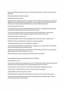 Viticultura - Pagina 3