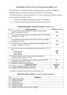 Sisteme informatice financiar-contabile - Pagina 2
