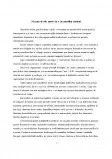 Mecanisme de protecție a drepturilor omului - Pagina 1