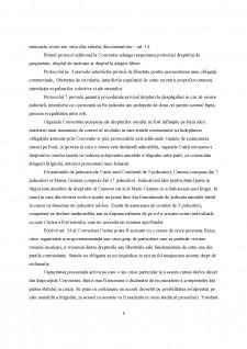 Mecanisme de protecție a drepturilor omului - Pagina 3