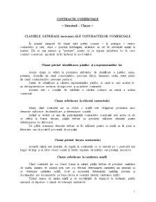 Contracte Comerciale in Economia de Piata - Pagina 1