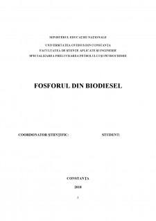 Fosforul din biodiesel - Pagina 2