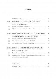 Leadership și responsabilitate socială - Pagina 2