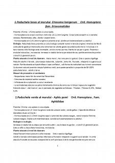 Entomologie sem 2 - 2016 - Pagina 1