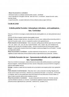 Entomologie sem 2 - 2016 - Pagina 5